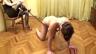 Mistress is training her slave