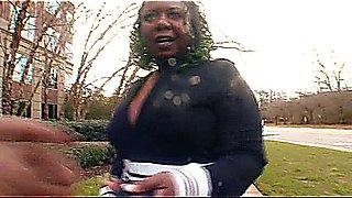 PoiZon Ivy